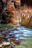 Narrows Zion-Nationalpark — Stockfoto