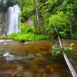 Spearfish Falls of the Black Hills — Stock Photo #10967770
