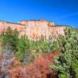 Zion National Park Geology — Stock Photo