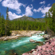 McDonald Creek Glacier National Park — Stock Photo