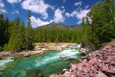McDonald Creek Glacier National Park — Stock Photo