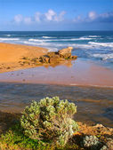 Hopkins River and Pacific Ocean — Stock Photo