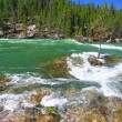Yellowstone River Rapids — Stock Photo
