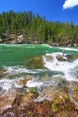 Yellowstone River Rapids — Stock Photo