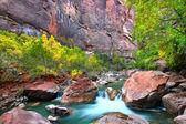 Virign River Zion National Park — Stock Photo