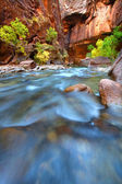 Rapids of the Virgin River Narrows — Stock Photo