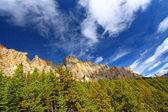 Castle Mountain Banff National Park — Stock Photo