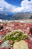 Glacier National Park Montana — Stock Photo