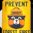 Stock Photo: Prevent Forest Fires Sign
