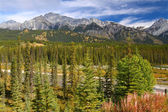 Bow River and Canadian Rockies — Stock Photo