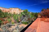 Zion National Park Overlook — Stock Photo