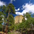 Devils Tower National Monument — Foto de Stock