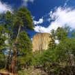 Devils Tower National Monument — Stock Photo #11917621