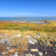 Great Salt Lake State Park — Stock Photo