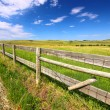 Stock Photo: Prairie Fenceline South Dakota