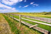 Prairie Fenceline South Dakota — Stock Photo