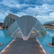 The City of Arts and Sciences of Valencia, Spain - Stockfoto