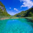 Blue lake — Stock Photo