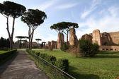 Terme di Caracalla (Baths of Caracalla) — Foto Stock