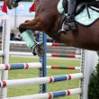 Show jumping — Stock Photo #12013125