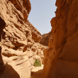Colored Canyon in Egypt — Stock Photo