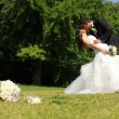 Wedding — Stock Photo #12013269