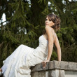 Bride in the park — Stock Photo #12014758