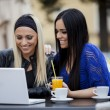 Girls with laptop — Stock Photo #12014930