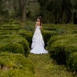 Bride in the park — Stock Photo #12256590