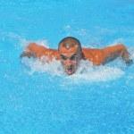 Hard swimming — Stock Photo #12152278