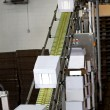 Stock Photo: Industrial conveyor line
