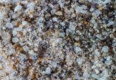 Sea salt Macro — Stock Photo