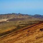 Volcanic landscape in Teide National Park, Tenerife, Canary Isla — Stock Photo #10851131