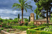 Gardens of La Alhambra in Granada, Spain — Stock Photo