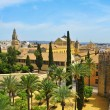 Alcazar and Cathedral–Mosque of Cordoba, Spain - Stock Photo