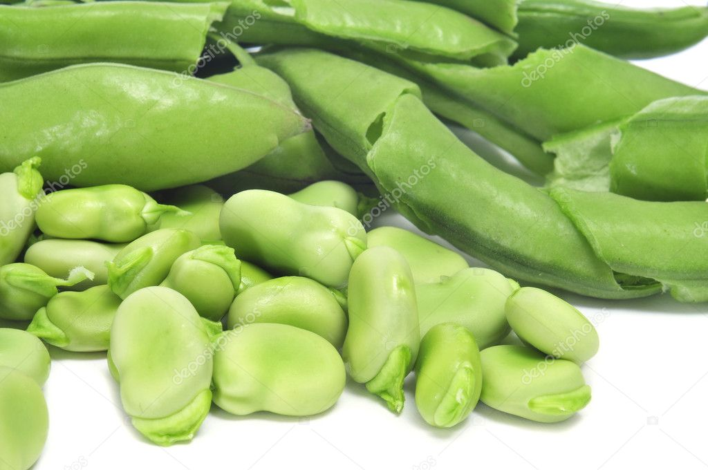 Closeup of some broad bean pods and some beans   #10860712