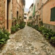 View of Valldemossa — Stock Photo #10923476