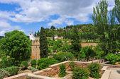 La Alhambra in Granada, Spain — Stock Photo