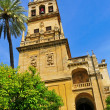 Cathedral Mosque of Cordoba, Spain — Stock Photo