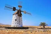 Windmill in El Cotillo, Fuerteventura, Canary Islands, Spain — Stock Photo