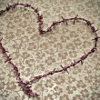Heart-shaped barbed wire — Stock Photo