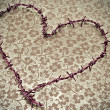 Heart-shaped barbed wire — Stock Photo #12174452