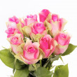 Bunch of pink roses - Stock Photo