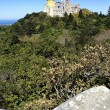Vertical view of Pena castle - Stock Photo