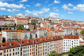 Lyon roof — Stock Photo