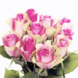 Ten pink roses — Stock Photo