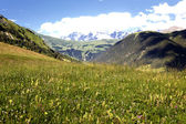 Savoy Alps-Europe in summer — Foto Stock