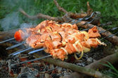 Appetizing juice shashlik. — Stock Photo