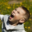 Little beautiful kid outdoor — Stock Photo #10901707