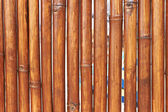 Natural bamboo background — Stock Photo